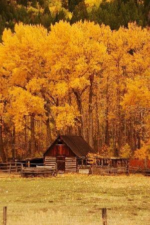 Chez Assoula_octobre_automne_117618330